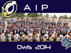 AIP Fighting Owls